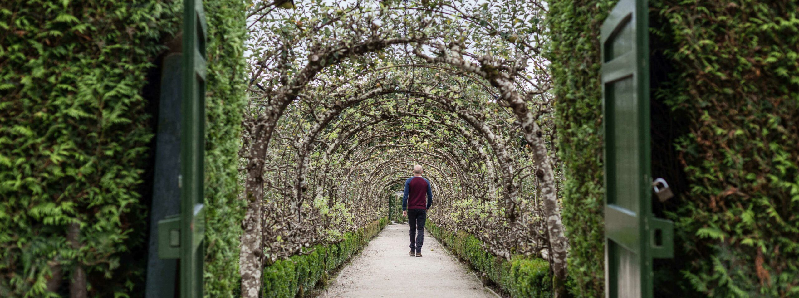 The Lost Gardens of Heligan | St Austell