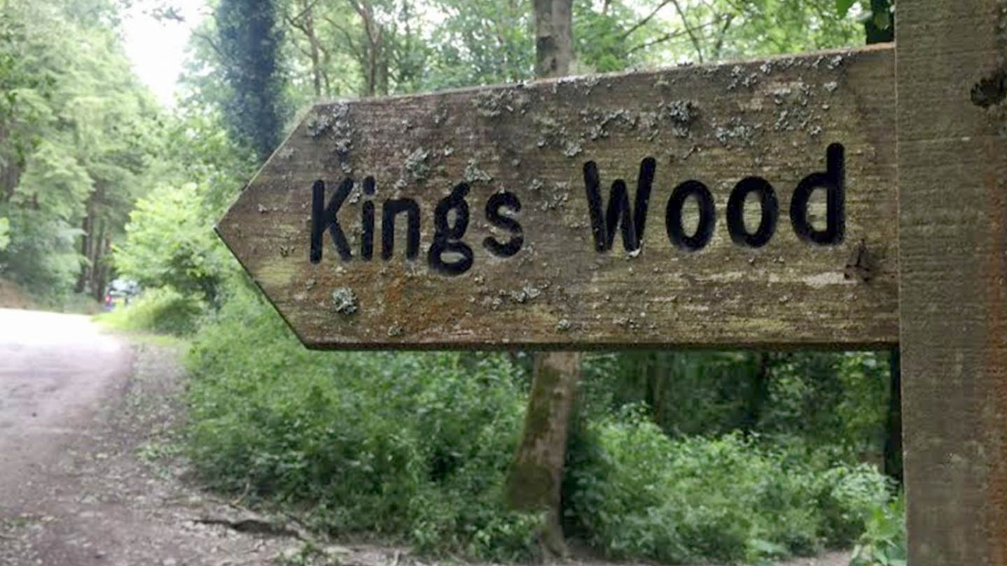 St Austell | Kings Wood