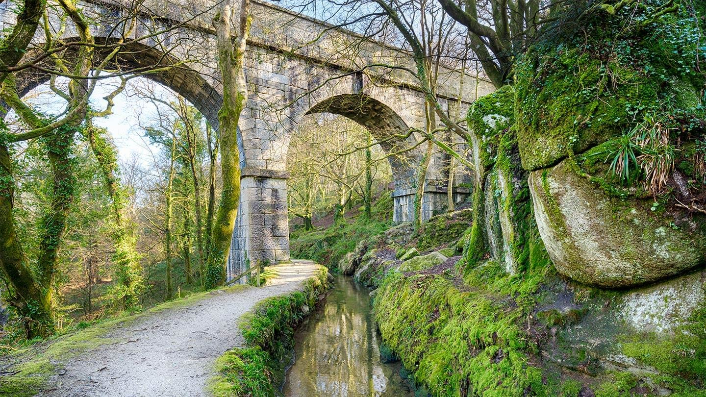 Luxulyan Valley | Discover St Austell