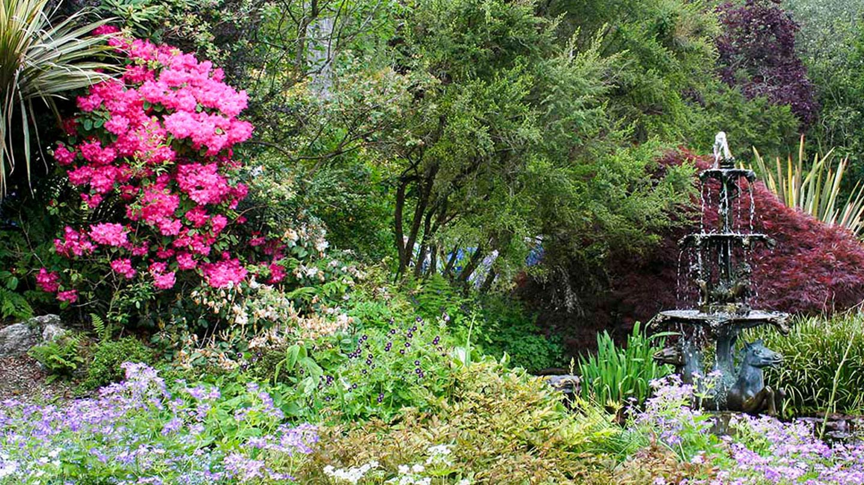 Pinetum Gardens | Discover St Austell