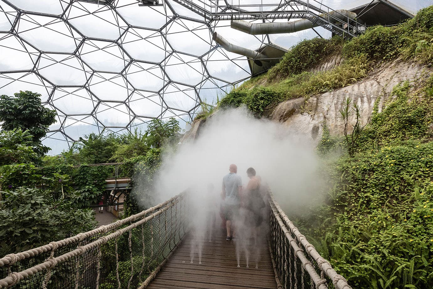 Eden Project – Artificial Creators Art Exhibition