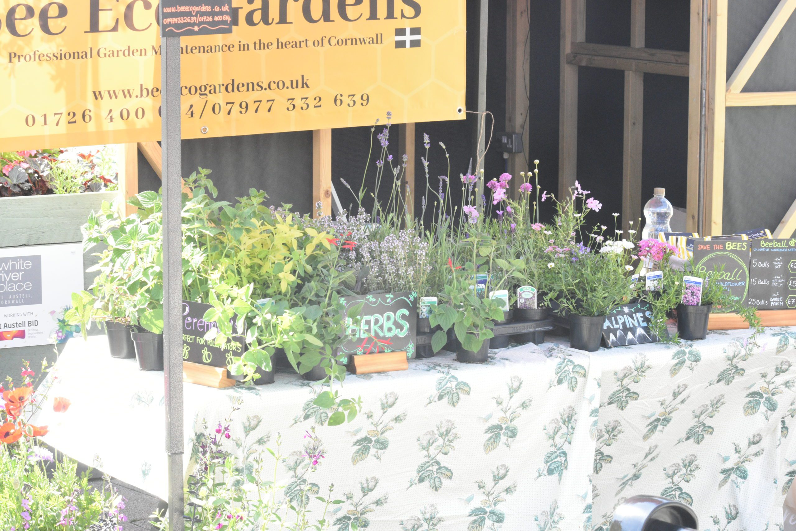 Garden Fest Bee Eco Garden